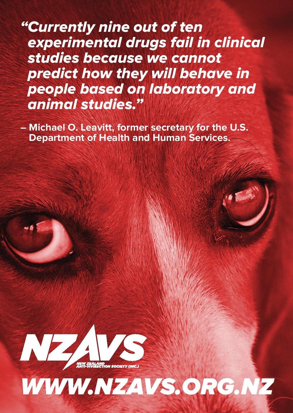 NZAVS_PressAds_3_PRINT- cropped